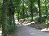 petrin-path