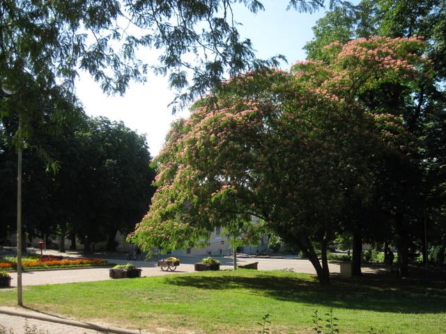 pecs-park